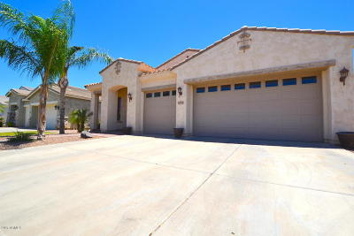 Gilbert Rental For Rent: 6274 S Moccasin Trail