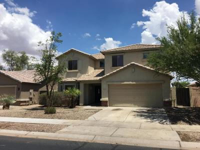 Queen Creek Single Family Home For Sale: 22675 S 212th Street