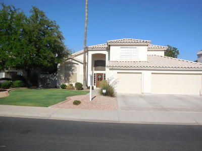 Chandler Single Family Home For Sale: 685 N Ash Drive