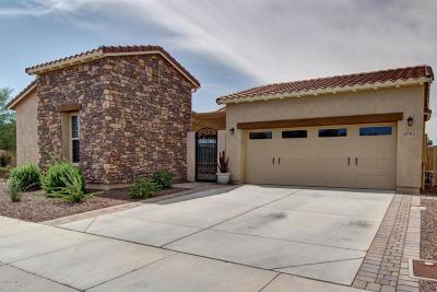 Maricopa County, Pinal County Single Family Home For Sale: 17743 W Cottonwood Lane