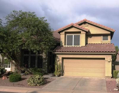 Cave Creek Single Family Home For Sale: 31009 N 44th Street