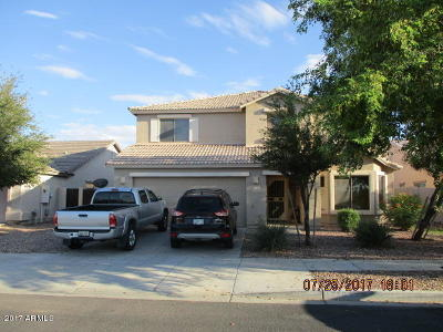 Goodyear Single Family Home For Sale: 17163 W Hilton Avenue