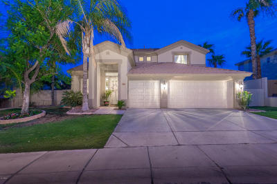 Chandler Single Family Home For Sale: 959 W Myrtle Drive