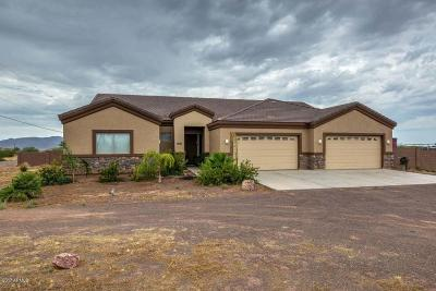 Wittmann Single Family Home For Sale: 23907 W Pinnacle Vista Lane