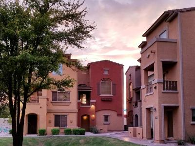 Condo/Townhouse For Sale: 2401 E Rio Salado Parkway #1193