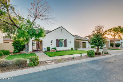 Litchfield Park Single Family Home For Sale: 779 W Juniper Lane