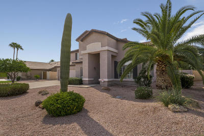 Mesa Single Family Home For Sale: 2245 E Knoll Street