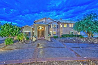 Peoria Single Family Home For Sale: 9519 W Tierra Grande