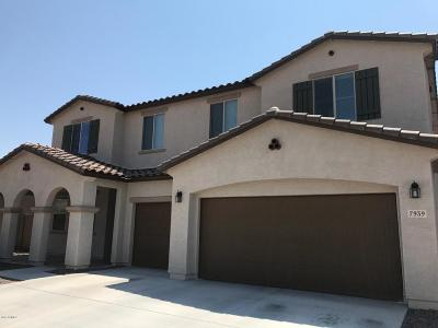 Peoria Single Family Home For Sale: 7939 W Quail Track Drive