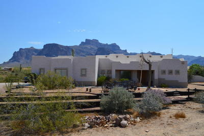 Apache Junction Single Family Home For Sale: 135 N Sixshooter Road