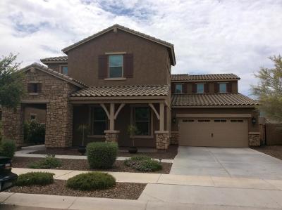 Queen Creek Single Family Home For Sale: 20059 E Escalante Road