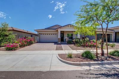 Verrado Single Family Home For Sale: 20615 W Nelson Place