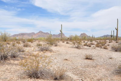 Queen Creek Residential Lots & Land For Sale: W Arizona Farms Road