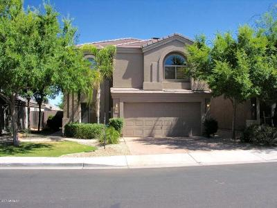 El Mirage Single Family Home For Sale: 12717 W Crocus Drive