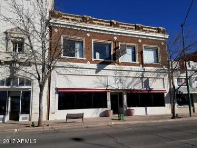 Douglas Commercial For Sale: 1133 N G Avenue