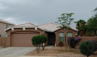 Gilbert Single Family Home For Sale: 3516 E Aris Drive
