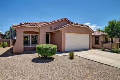 Maricopa County, Pinal County Single Family Home For Sale: 21855 E Via Del Palo Drive