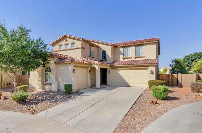 Maricopa Single Family Home For Sale: 42619 W Cheyenne Drive