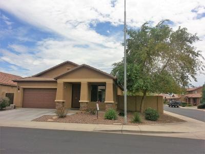 Chandler Single Family Home For Sale: 4023 E Cherry Hills Drive