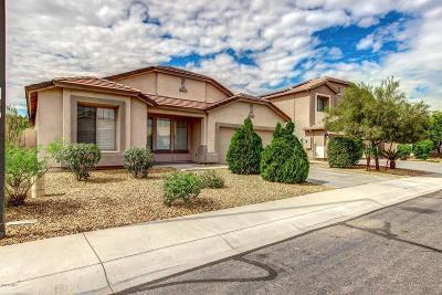Litchfield Park Single Family Home For Sale: 13119 W Marlette Avenue