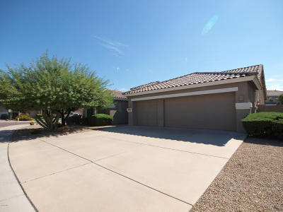 Phoenix Single Family Home For Sale: 25207 N 44th Avenue