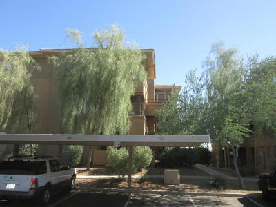 Scottsdale Apartment For Sale: 20100 N 78th Place #3076