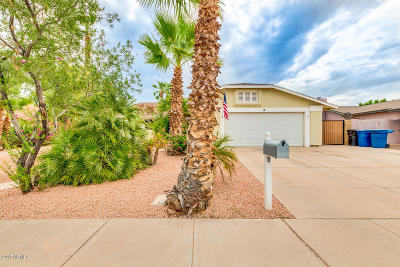 Chandler Single Family Home For Sale: 35 S Kenneth Place