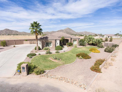 Maricopa County, Pinal County Single Family Home For Sale: 7172 W Mare Avenue