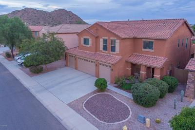 Queen Creek Single Family Home For Sale: 2251 W Angel Way