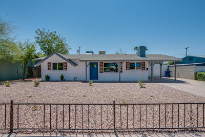 Tempe Single Family Home For Sale: 1141 W Elna Rae Street
