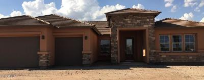 Peoria Single Family Home For Sale: 10430 W Avenida Del Sol