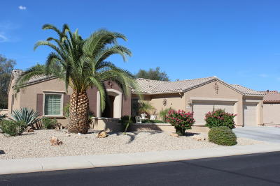 Surprise Single Family Home For Sale: 16760 W Cathedral Rock Court