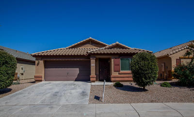 Tolleson Single Family Home For Sale: 10240 W Gross Avenue