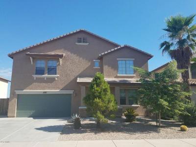 Sun City Single Family Home For Sale: 12118 W Villa Chula Court