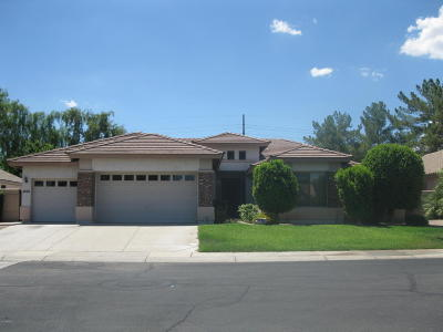 Tempe Single Family Home For Sale: 8124 S Stephanie Lane