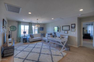 Mesa Single Family Home For Sale: 2812 E Presidio Street