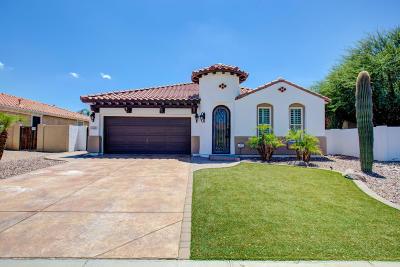 Markwood, Markwood North, Markwood South Single Family Home For Sale: 2445 E Desert Broom Place