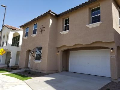 Gilbert Single Family Home For Sale: 2221 S Jacana Court