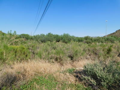 Residential Lots & Land For Sale: 1048 W Silver King Road