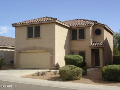 Cave Creek Single Family Home For Sale: 5049 E Roy Rogers Road