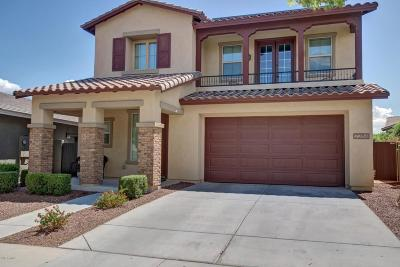 Buckeye Single Family Home For Sale: 2264 N Alsap Road