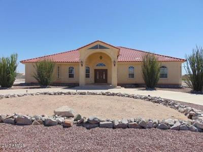 Casa Grande Single Family Home For Sale: 9661 N Chemehlevi Drive