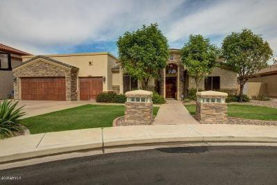 Mesa Single Family Home For Sale: 2618 E Inca Circle
