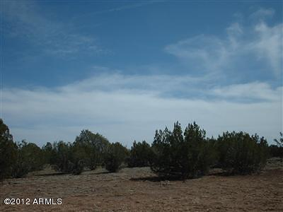 Seligman AZ Residential Lots & Land For Sale: $12,000