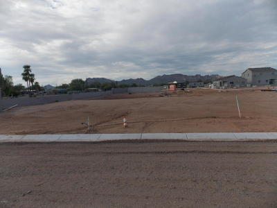 Apache Junction Single Family Home For Sale: 1936 W Road Agent Street