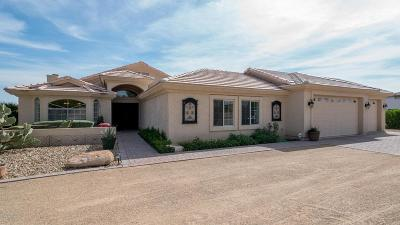Peoria Single Family Home For Sale: 6735 W Calle Lejos