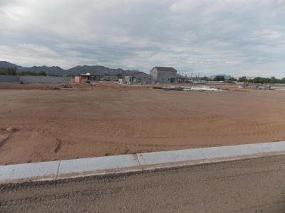 Apache Junction Single Family Home For Sale: 1948 W Road Agent Street