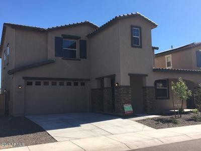 Buckeye Single Family Home For Sale: 21379 W Terri Lee Drive