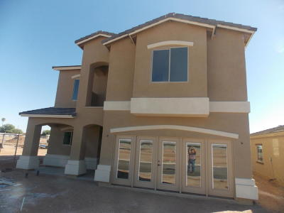 Apache Junction Single Family Home For Sale: 1966 W Road Agent Street