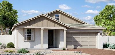 Mesa Single Family Home For Sale: 9723 E Palladium Drive